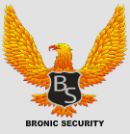 BRONIC SECURITY SRL