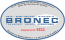 BRONEC INTERNATIONAL COMPANY SRL