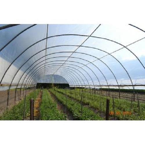 folie solar uv sotrafa imd horticulture systems. Black Bedroom Furniture Sets. Home Design Ideas